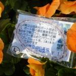 レインボークォーツ紐紫・8ミリ玉・在庫4本