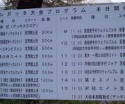 第81回早慶レガッタ大会プログラム