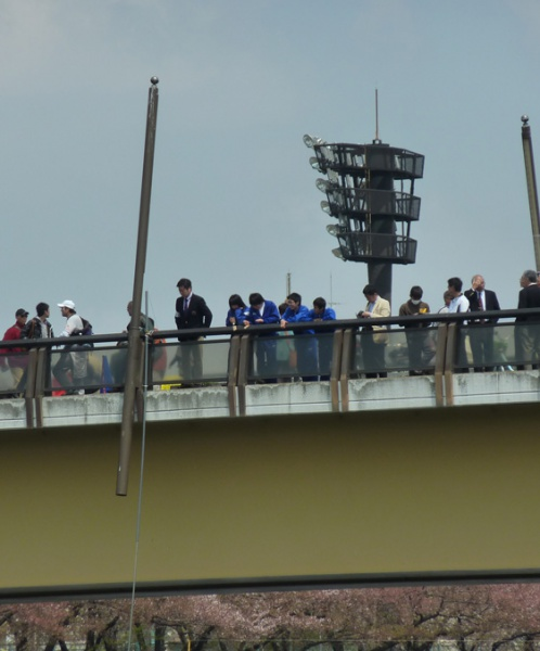 桜橋から様子を見守る山田高校漕艇部の仲間たち